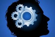 compartilhar conhecimento sobre empresas